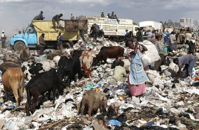 29.Фотография - REUTERS/Thomas Mukoya. Анализ почвы, который был взят неподалеку от свалки - показал уровень свинца в ней в 10 раз, превышающий норму.