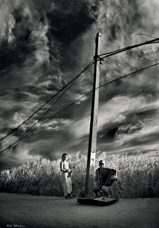 Фотография Последний аккорд / Петр Стахов / photographers.com.ua