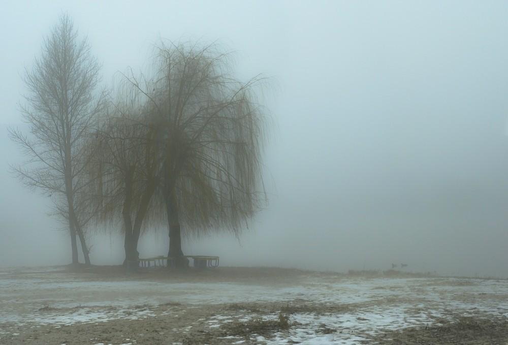 Как правильно фотографировать в туман