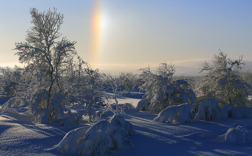 котята картинка радуга зимой выполнять действия, как