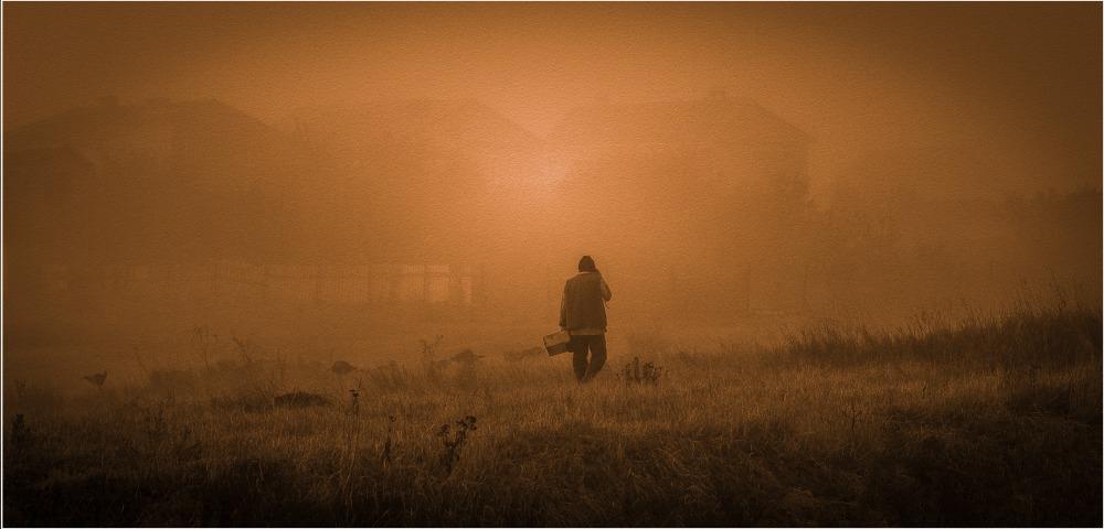тропических я упаду туманом картинки назначения рхх