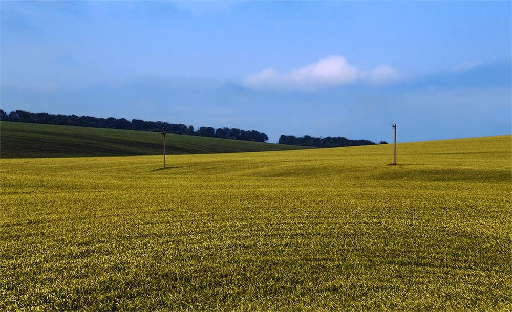 картинки поле с горизонтом угол жена