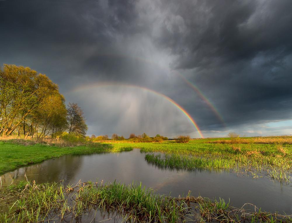 Картинки красивая природа дождь