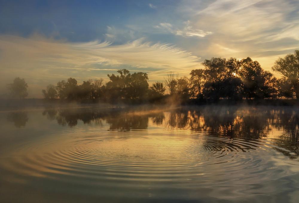 Фотография Круги на воде / Зоя (ник Альт@ир) / photographers.ua