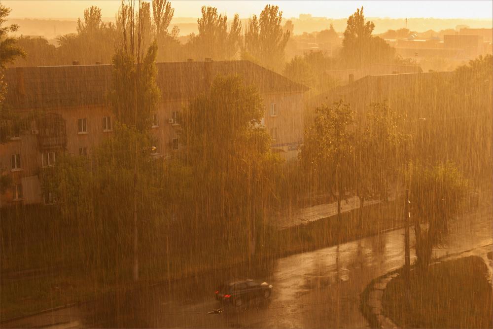 Зрлотой дождь