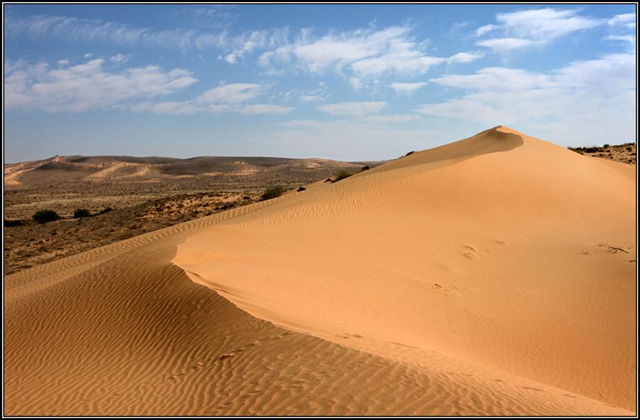 люди, казахстан пустыня картинки под