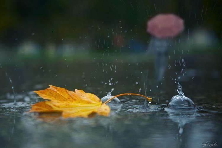 Фотография ...человек под дождем... / Sergey Kolesnikov / photographers.com.ua