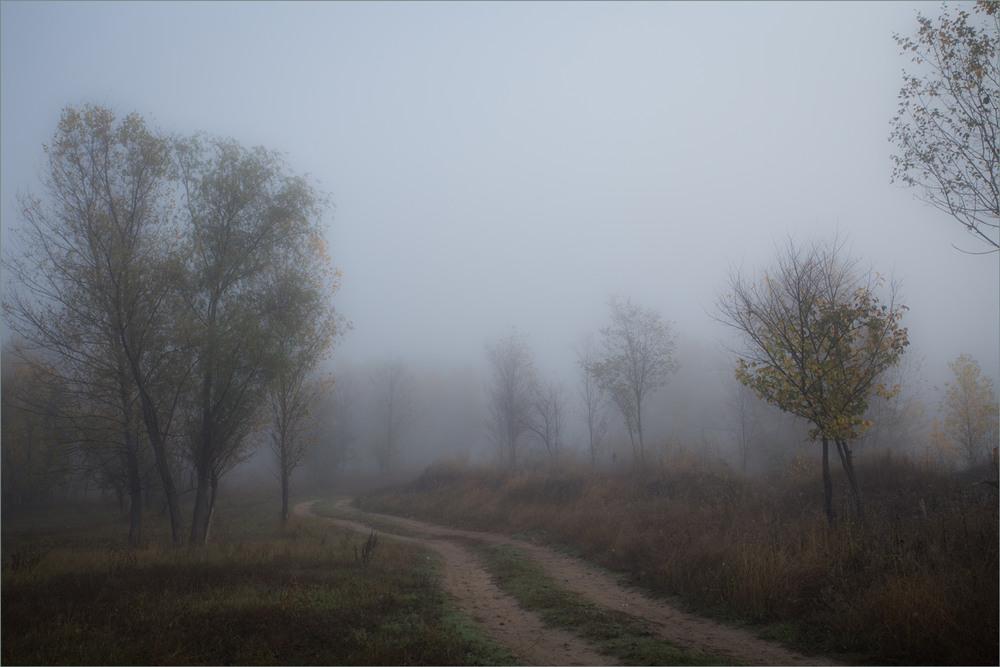 как правильно фотографировать в туман всего кабардинская
